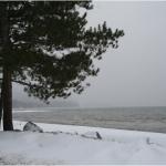 Harmony Beach